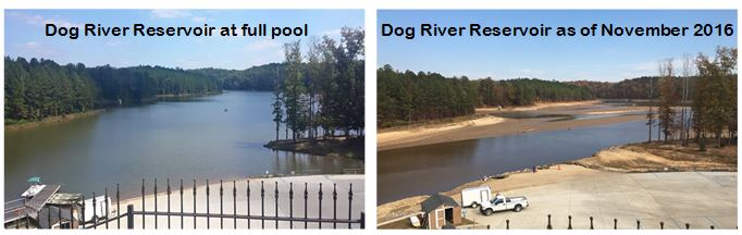 dog-river-comparison